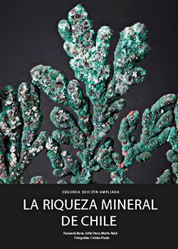 Cubierta para La riqueza mineral de Chile