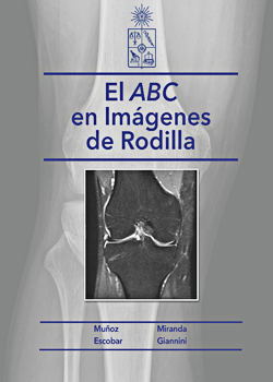 Cubierta para El ABC en imágenes de rodilla