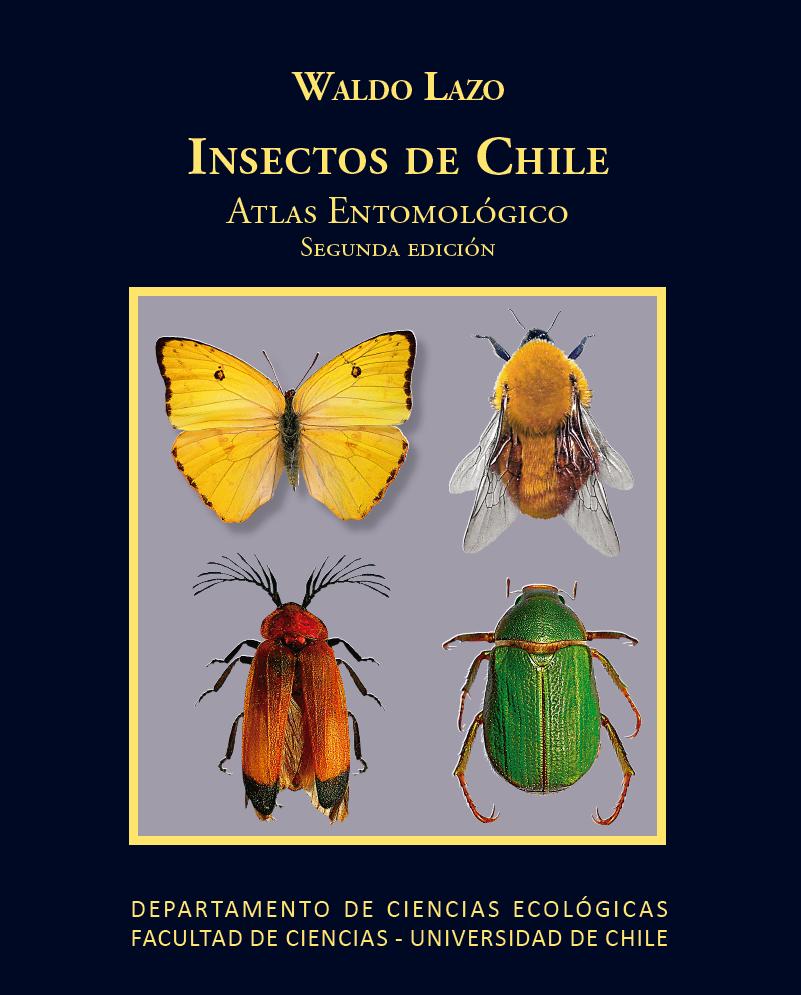 Cubierta para Insectos de Chile: atlas entomológico