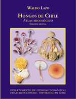 Cubierta para Hongos de Chile: atlas micológico